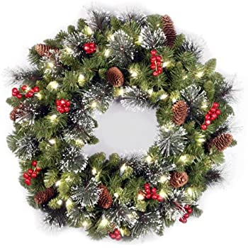 National Tree 24 Inch Crestwood Spruce Wreath With Silver Bristles, Cones,  Red Berries And