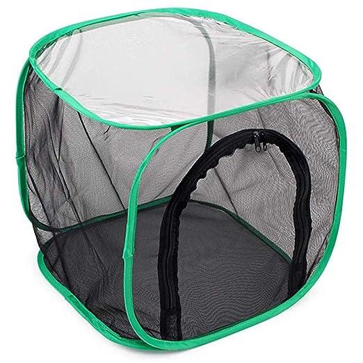 AmaSells - 1 Caja Plegable portátil para Jaula de Insectos y ...