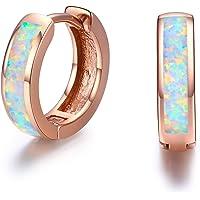 Huggie Earrings Small Hoop Earrings 925 Sterling Silver Fine Circle Hinged Hoop Cute Opal Earrings Gift for Girls Stud Earring for Kids,Diameter 14mm