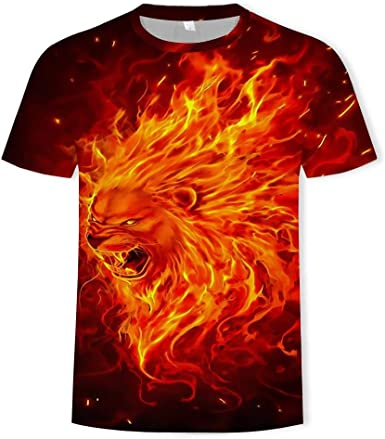 Camiseta Hombres León De Fuego 3D Digital Imprimen Camisetas Unisex Camisetas De Manga Corta Casual Hipster Camisas De Cuello Redondo Deportivas Sport tee para Hombres,3XL: Amazon.es: Ropa y accesorios