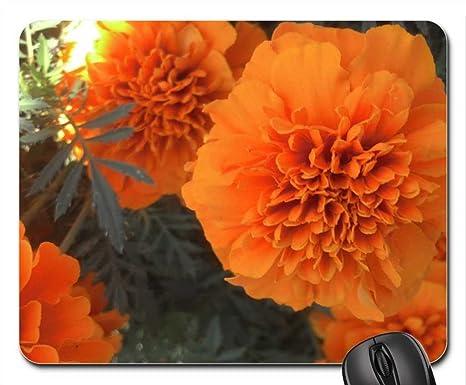 Pretty Orange Flower Mouse Pad Mousepad Flowers Mouse Pad Amazon