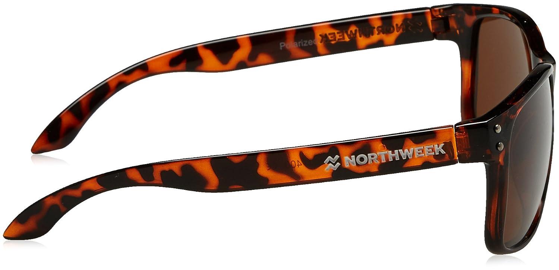 NORTHWEEK Bold, Gafas de Sol Unisex, Shine Tortoise Brown, 45: Amazon.es: Ropa y accesorios