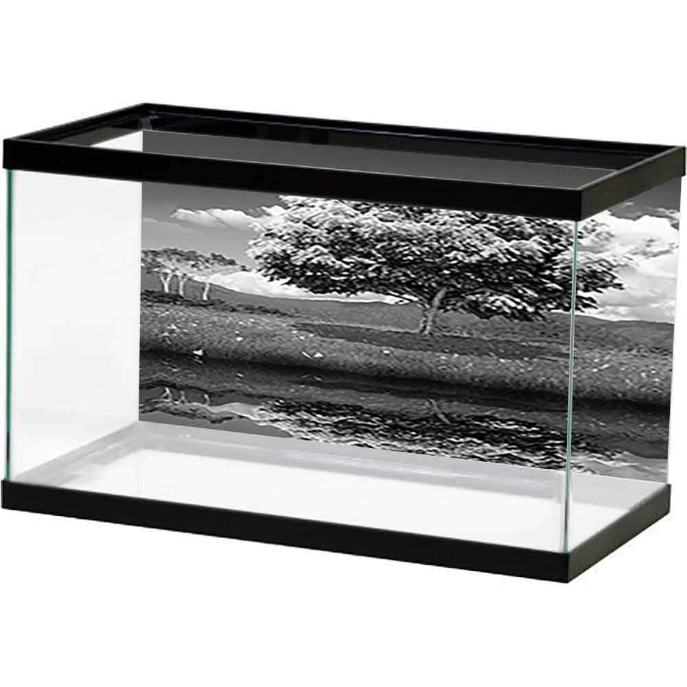 bybyhome Easy to Apply and Remove Fish Tank Spring and Summer Fresh Dreamy Mysterious Nature Forest Woods (2) 3D One Side Fish Tank by bybyhome