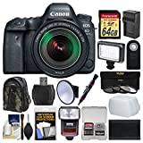 Canon EOS 6D Mark II Wi-Fi Digital SLR Camera & EF 24-105mm IS STM Lens with 64GB Card + Backpack + Flash + Video Light + 3 Filters Kit