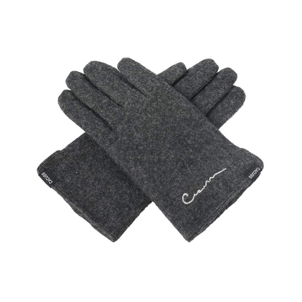 DSADDSD Handschuhe Winter, einfarbig, Warmer Touchscreen Verschleißfeste, Winddichte Handschuhe