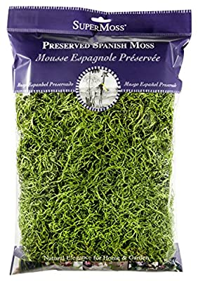 Super Moss 26912 Spanish Moss Preserved, Grass, 8oz (200 Cubic inch)