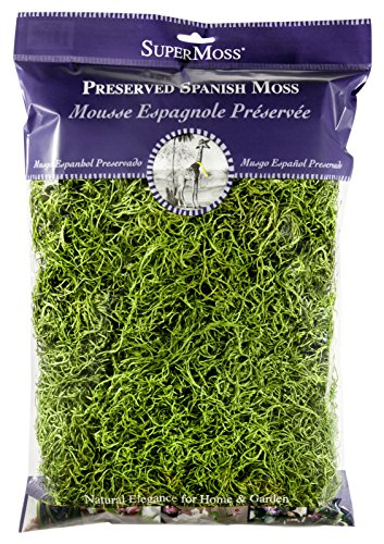 Super Moss 26912 Spanish Moss Preserved, Grass, 8oz (200 cubic inch) by Super Moss
