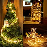 Twinkle Star 200 LED 66ft Fairy Copper String