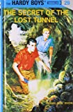 Best unknown Book For Boys - The Secret of the Lost Tunnel Review