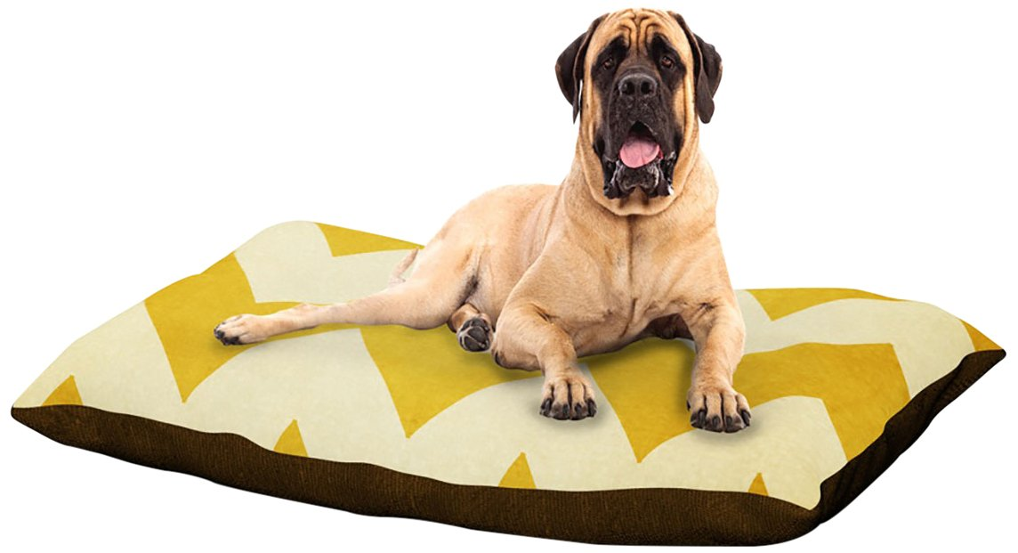 1932 X-Large 40\ 1932 X-Large 40\ Kess InHouse Catherine McDonald Walk with Me  Cherry Blossom Dog Bed, 50 by 60-Inch