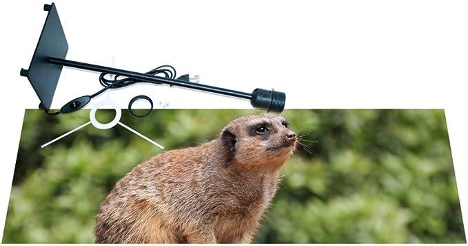 banjado – Lámpara de mesa lámpara de escritorio diseño de suricato ...