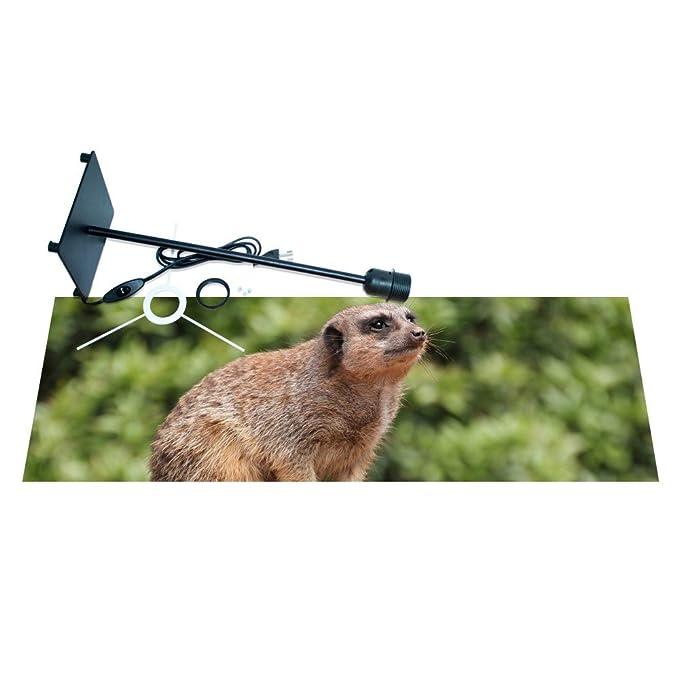 banjado - Lámpara de mesa lámpara de escritorio diseño de suricato ...