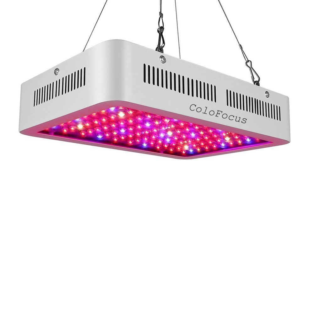 Colo Focus 1000w double chips indoor LED grow light