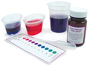 Educational Innovations Red Cabbage Extract