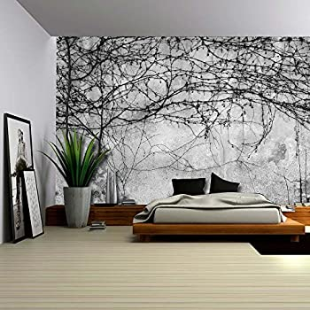 wall26 black branches growing on a pavement wall wall mural removable wallpaper - Wallpaper House Decor