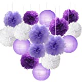 16pcs Tissue Paper Flowers Ball Pom Poms Mixed Paper Lanterns Craft Kit for Lavender Purple Themed Birthday Party Decor…