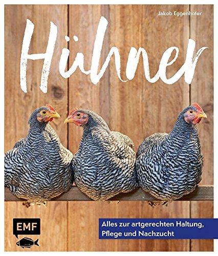 Hühner: Alles zur artgerechten Haltung, Pflege und Nachzucht