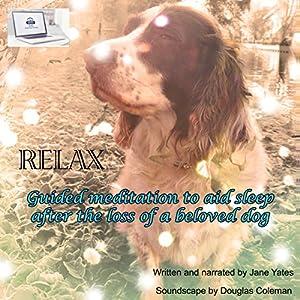 Relax Speech