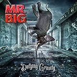 Defying Gravity (Vinyl Edition)