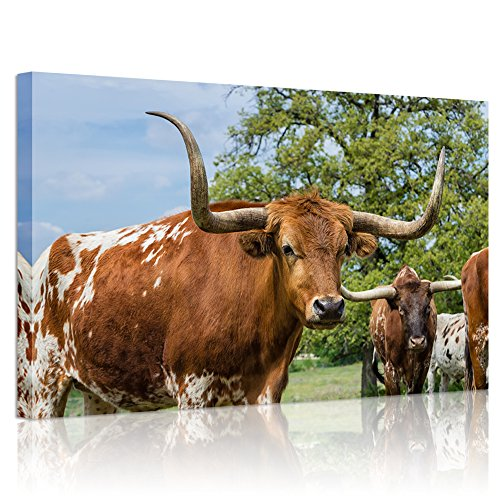 (Welmeco Farm Animals Wall Art Decor Close Up of Texas Longhorn Picture Art Giclee Canvas Prints Gallery Wrap Contemporary Art Ready to Hang (24