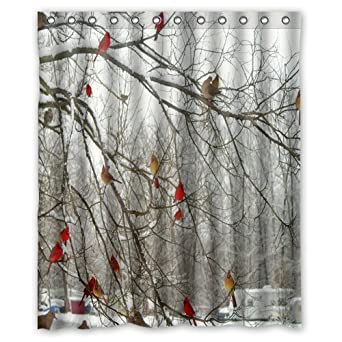 amazoncom fashionable flawless design shower curtains winter birch trees and cardinals shower curtains 60 x 72home fashions bathroom bath decor by