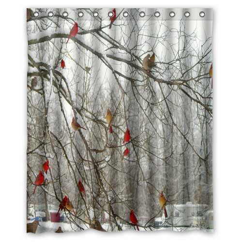 Fashionable Flawless Design Shower Curtains Winter Birch Trees And Cardinals 60 X 72Home Fashions