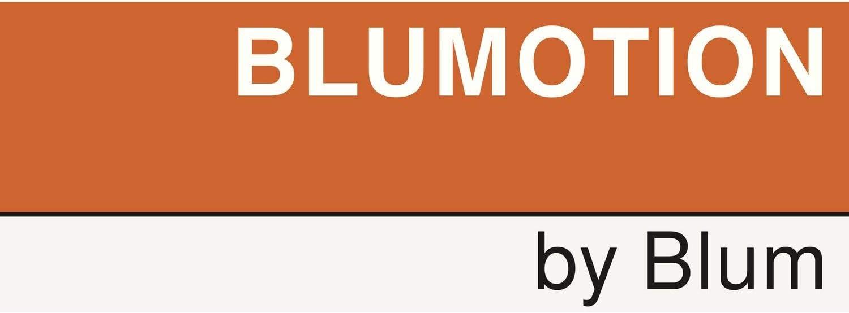 Blum mm.550 Glissiere de tiroir bois sortie totale 566 h-capacite 50 kg avec amortisseur Long
