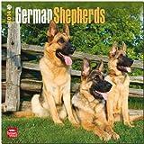 German Shepherds Calendar, , 1465010432