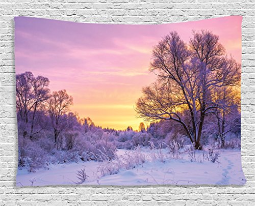 Tapestry Ambesonne Landscape Weather Blizzard