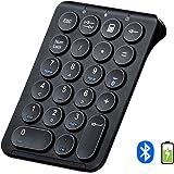 テンキーボード Bluetooth テンキー 無線 充電式 極薄型 Tab/Esc/Backspaceキー付き