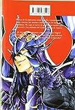 Saint Seiya Lost Canvas Hades 15 (Shonen Manga) (Spanish Edition)