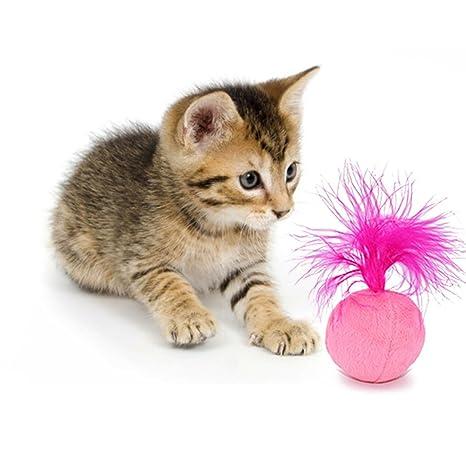 Juguetes para gato Sotoboo, pelota de pompón con plumas de sisal para arañar juguete divertido
