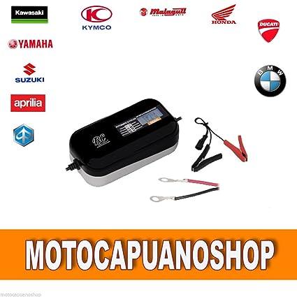 Cargador batería ácido BC BRAVO 1500 diseño 12 V coche moto a ...