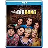 Big Bang Theory Temporada 8