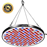 KINGBO 50W UFO LED Grow Light Panel Full Spectrum with Switch for Indoor Plants Seeding Growing and flowering.