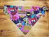 DC Hero Girls Heroine Wonder Woman, Bat Girl, Super Girl Pet No-Tie Bandana