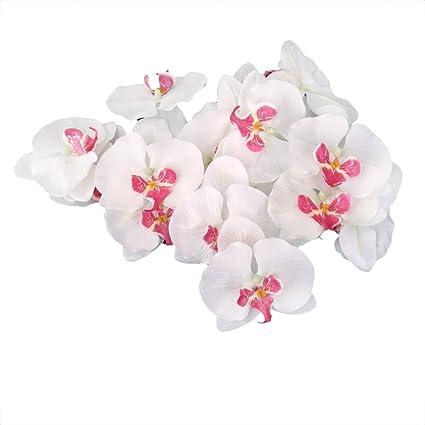 20x Flor Orquídea Artificial de Pelo Muñeca Decoración de Boda (blanco)