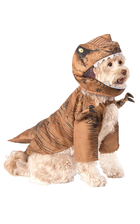 Rubies Jurassic World: Fallen Royaume T. Rex pour Animal Domestique Costume, Medium Rubies Decor Pets 580689_M