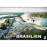 Wildes Brasilien (Wandkalender 2015 DIN A3 quer): Die grüne Lunge der Welt (Monatskalender, 14 Seiten)