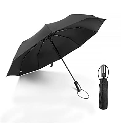 ACBAGI Portable Travel Umbrella Auto Open & Close Lightweight 10 Ribs Windproof Canopy Umbrella