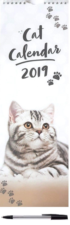 2019 gatos gatitos alto delgado calendario de pared lindo regalo de Navidad cumpleaños: Amazon.es: Oficina y papelería