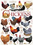 COBBLE HILL Chicken Quotes Jigsaw Puzzle (1000 Piece)