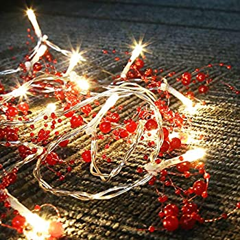 Amazon.com: youning luces de navidad, 19,7 pies, 40 LED ...