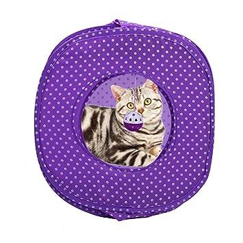 yunt gato tienda gato Cesta Pet Tent plegable gato Casa höle gato juguete en lila para
