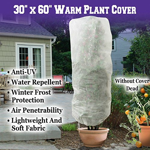 Warm Worth Plant Cover and Plant Protecting Bag for Frost Protection, Multi Sizes for Your Choice (30'x60')