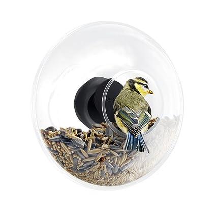 Eva Solo 571048.0 pájaro Bola Forro para Ventana Parabrisas, 90 ML, Transparente
