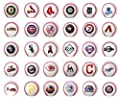Set of 30 Major League Baseball Mini Baseballs. MLB Complete Set with Team Logos. Cake Toppers.