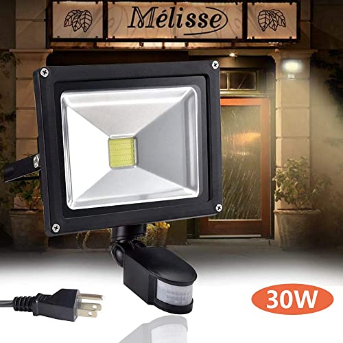 30W Portable LED Work Light, Rechargeable Solar Work Lights 1500LM, Waterproof COB Flood Light 6000mAh Power Bank with Magnetic Base for Car Reparing, Camping, Hiking, Emergency Use
