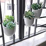 Supla-Pack-of-6-Assorted-Artificial-Echeveria-Succulent-Picks-Textured-Faux-Succulent-Pick-Agave-Cactus-in-Different-Green-for-Fake-Succulent-Bouquet-Floral-Arrangement