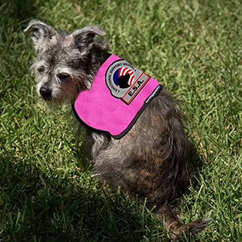 Working Service Dog Brand - Premium ESA Dog Vest - For Smaller Emotional Support Animals (4-7 Pounds, Raspberry) by Working Service Dog (Image #2)
